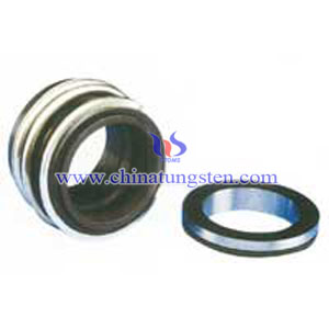 type silicon carbide mechanical seal